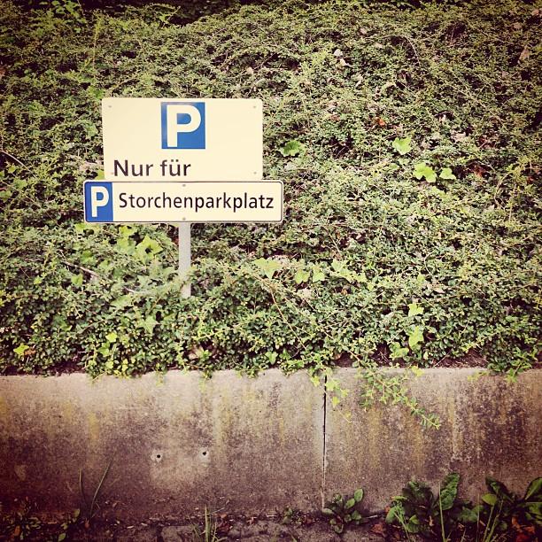 Storchenparkplatz